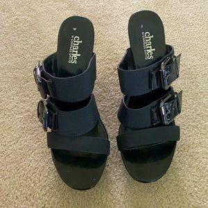 Brand New!! Charles by Charles David wedge sandals